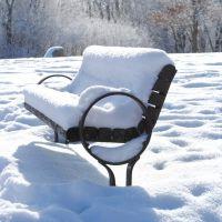 Hickory Hill Park, Snow Bench, Ред-Оак