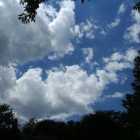sky (summer 2006), Чаритон