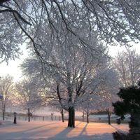 Winter in Iowa, Элдора