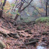 Hogs Back trail, Элдора