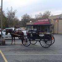 Johnny at Athens Pharmacy 2006, Атенс