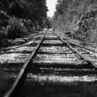 Rail, Атмор
