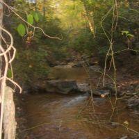 Jimy Creek, Бруквуд