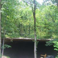 Cathedral Caverns, Вудвилл