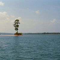 THE LONE PINE, Sand Island, Lake Martin, ALA (8-4-2006), Голдвилл