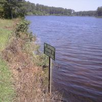 Lake & alligator warning sign, Geneva state forest, Кинстон