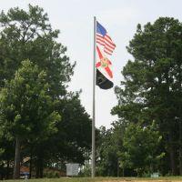 Flags, Коттонвуд