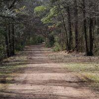 Red Mt Park Trails, Липскомб