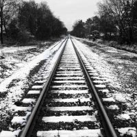 Snow Tracks, Нортпорт