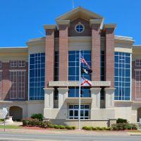 Alabama - Houston County Courthouse, Ньювилл