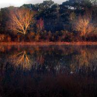 DAWN ON LAKE SEMINOLE, Ньювилл