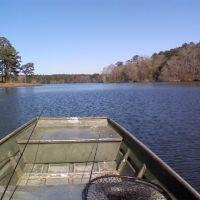 Dale County Lake, Озарк