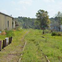 Louisville & Nashville Graceville Branch - Abandoned, Онича