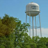 Covington County water tower, Онича
