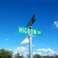 Higdon Drive, Jay, Florida, Поллард