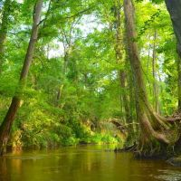 Autauga Creek, Prattville, Alabama, Праттвилл