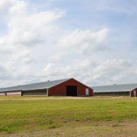 Rural Covington County, Санфорд