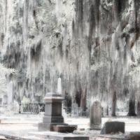 Live Oak Cemetery - Est. 1829, Селмонт