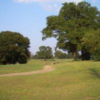 Golf Ground, Трой