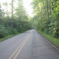 Road In Wheeler WLR Decatur, AL, Флинт-Сити