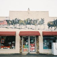 Cox Market  Horses and Wagon Wall Art Henagar AL, Хенагар