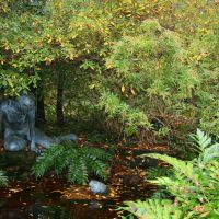 Birmingham Botanical Gardens Pond, Хомевуд