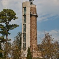 Vulcan Park and Museum, the Vulcan Statue is the largest Cast Iron Statue in the World., Хомевуд