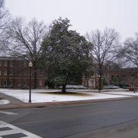 Dawson in the Snow, Хомевуд