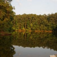 Aldridge Gardens Lake, Хувер