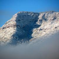 Mingus Mt Snowy Favorite, Кларкдейл