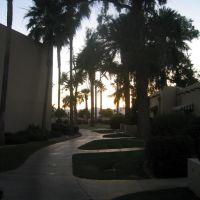 Sunset Pathway, Литчфилд-Парк