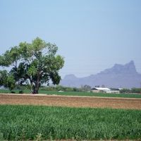 Looking NW at Picacho Peak, Марана