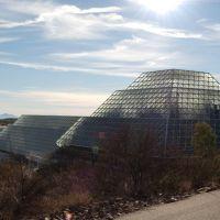 Biosphere 2, Оракл