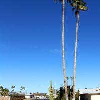 Twin Palms, Сан-Сити