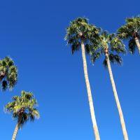 Five Palms, Сан-Сити