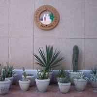 Cactus et sceau du comté de Pima, Tucson, AZ, Тусон