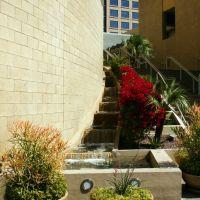 Flowered Stairs, Финикс