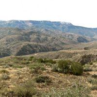 The View from Ikes Backbone, Чинли