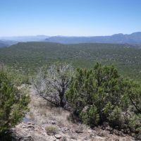 Lower Deadman Mesa, Чинли