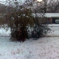 snowy day, Аткинс