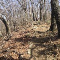 Mt Kessler trail, Вашингтон