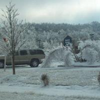 Ice Storm 2009, Вашингтон