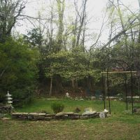 Dogwoods in Spring, Вашингтон