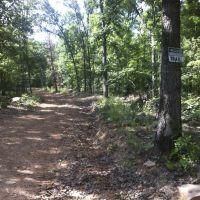 Joe Clark Trail, Lake Wilson, Fayetteville, AR, Вашингтон