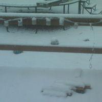 Snow in 2011, Винн