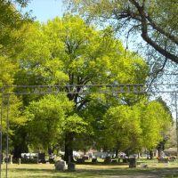 Alma City Cemetery, Alma, Ark., Киблер