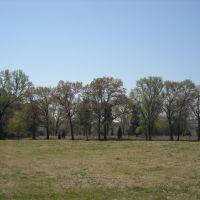 Byers Cemetery, Collum Lane W. Alma, Arkansas, USA, Киблер