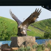 Eagle across from Clinton Presidential Library gift shop by Joe Recer, Литтл-Рок