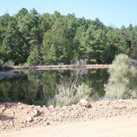 Nasty pond, Лонсдейл