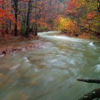 Mine Creek, Мак-Каскилл